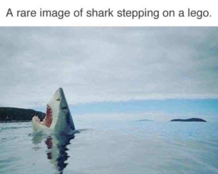 Don't step on the LEGO